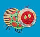 Веселая гусеница из бумажных тарелочек